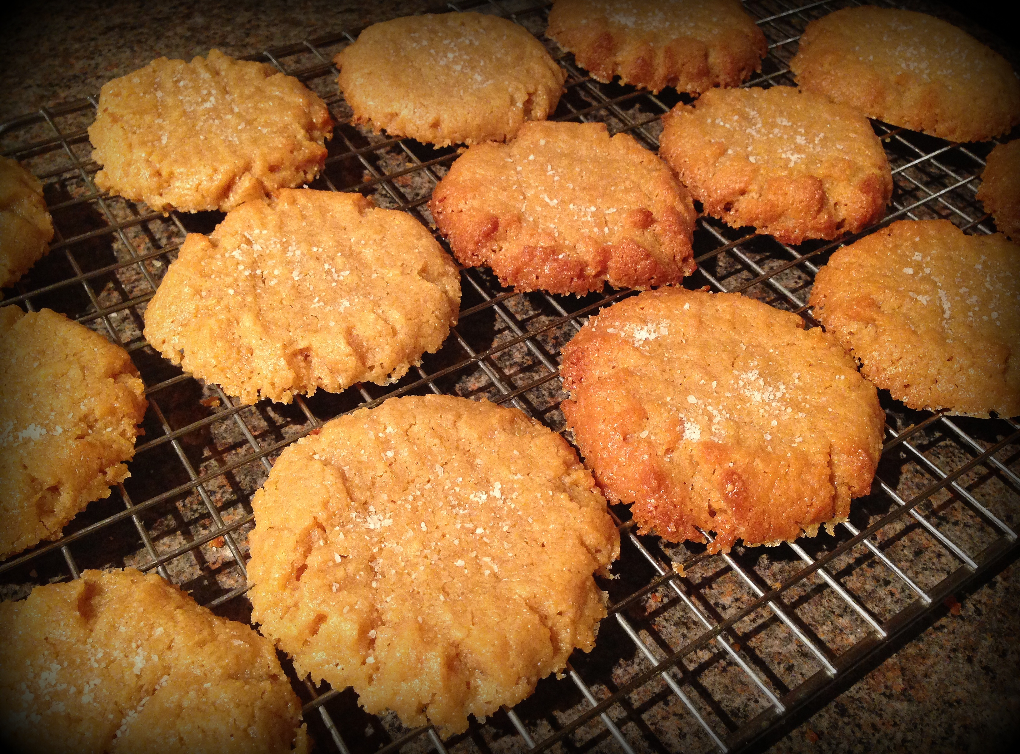Flourless PB cookies 7